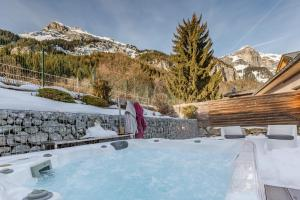 LES EDELWEISS MONT-BLANC B&B - Accommodation - Passy Plaine Joux