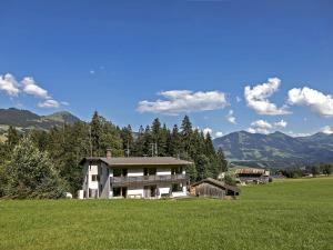 Villa Trinkl - Accommodation - Hopfgarten im Brixental