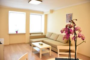 obrázek - Apartamenty Drzewna