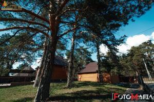 Baza otdykha Sosny, Holiday parks  Kaluga - big - 54