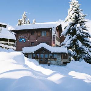 Alp-Hôtel - Hotel - Megève