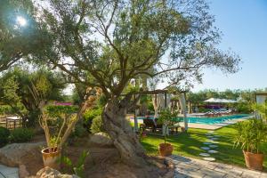 Can Arabí, Case di campagna  Ibiza città - big - 17