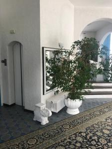 Maison Adèle - AbcAlberghi.com