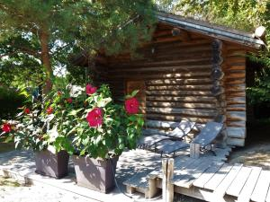 Location gîte, chambres d'hotes Log Cabin in the Loire Valley dans le département Maine et Loire 49