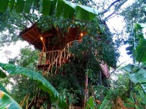 Habarana Ambasewana Resort - Habarana