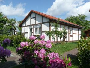 Ferienhaus Kogge im Feriendorf Alt - Hollern