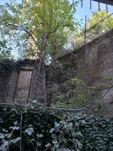 Albergo Al Carugio, Penziony  Monterosso al Mare - big - 79