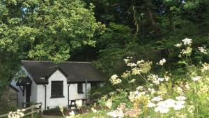 Oak Tree Cottage - Llechryd