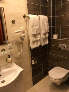 Galia, Hotels  Druskininkai - big - 7