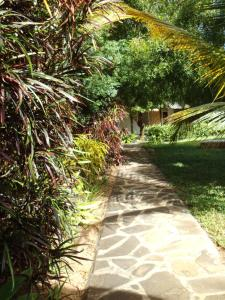 Echo Villas Watamu, Chaty v prírode  Watamu - big - 14