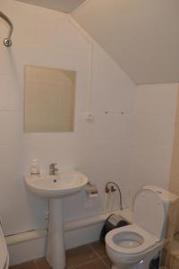 Mini-Hotel Veseliy Bober, Inns  Ostashkov - big - 41