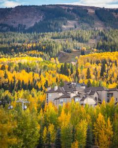 Snowmass Village Condominiums - Apartment - Aspen