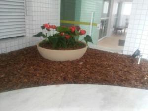 Residence Premium, Apartments  Mongaguá - big - 13