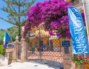 Blue Marlin Vacanze - AbcAlberghi.com