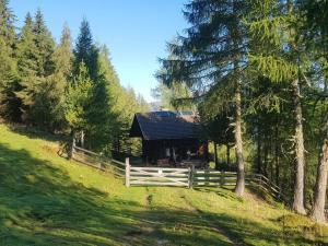 Neuwirth Hütte, Дома для отпуска  Гнезау - big - 42