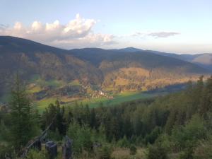 Neuwirth Hütte, Дома для отпуска  Гнезау - big - 44