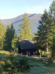Neuwirth Hütte, Дома для отпуска  Гнезау - big - 46