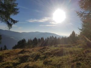 Neuwirth Hütte, Дома для отпуска  Гнезау - big - 48