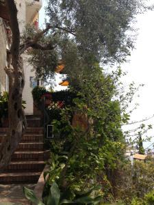 Hotel Villa Greta, Hotels  Taormina - big - 97