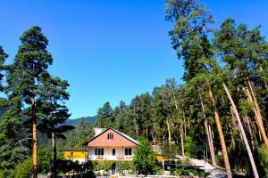 Guest House on Meskheti, Affittacamere - Borjomi