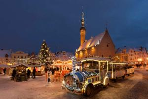 Vip Old Town Apartments, Ferienwohnungen  Tallinn - big - 50