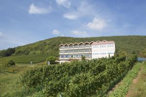 Hotel Haus am Weinberg - Diedesfeld