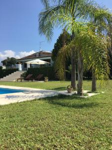 Villa Green, Vily  Partinico - big - 38