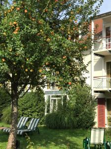 AngerResidenz, Hotely  Zwiesel - big - 34