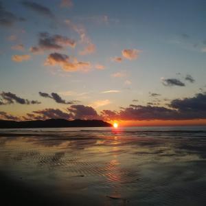 Karpen Plazh - (( Shelk ))
