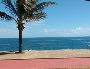 Apartamento Farol da Barra Salvador, Apartmány  Salvador - big - 22