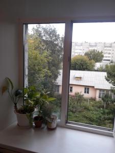 obrázek - Apartment on Baykalskaya 168