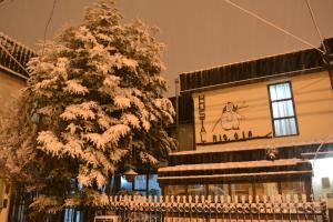 Hostal Rio Ona - Hotel - Ushuaia