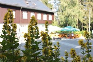 Accommodation in Scheibenberg