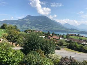 obrázek - Haus im Grünen bei Luzern