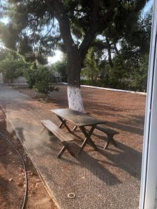 Pine Villa, Дома для отпуска  Selínia - big - 4