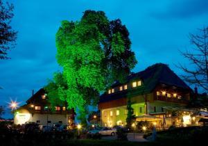 Hotel Zollner