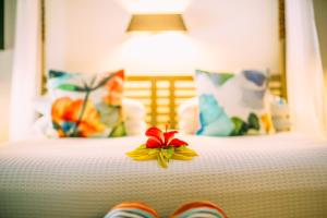 Qamea Resort & Spa (4 of 60)