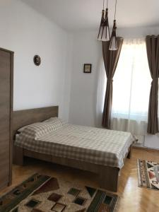 obrázek - Minion Villa in the heart of Bucharest