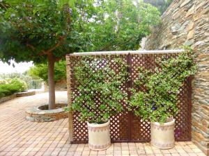 Anastasia Luxury Villas Andros Greece