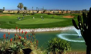Villa Riad les Deux Golfs, Guest houses  Marrakech - big - 83