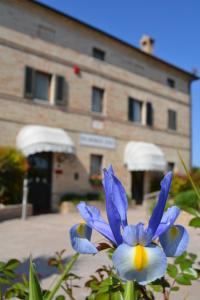Alta Badia Hotels