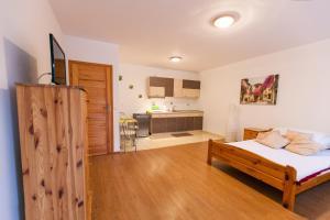 Apartament Dadaj 2