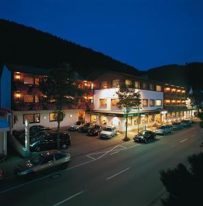 3 hvězdičkový hotel Kur- und Sporthotel Göbel Willingen Německo