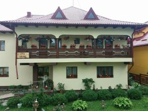 Auberges de jeunesse - Casa Miruna