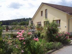 Ferienwohnung-Rachel - Apartment - Zwiesel