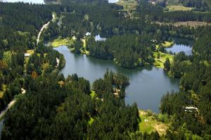 Lakedale Resort (3 of 59)