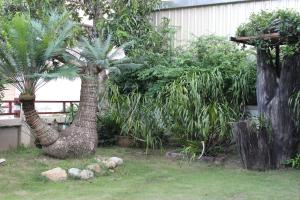 Tree Home Plus, Homestays  Nakhon Si Thammarat - big - 67
