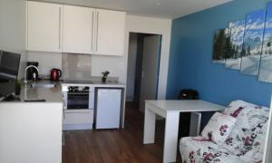 Appartement 250 mètres des pistes gourette - Apartment - Gourette