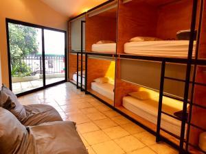 Fauna Luxury Hostel, San José