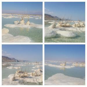 Nadia Hosting Dead Sea, Lodges  Neve Zohar - big - 2